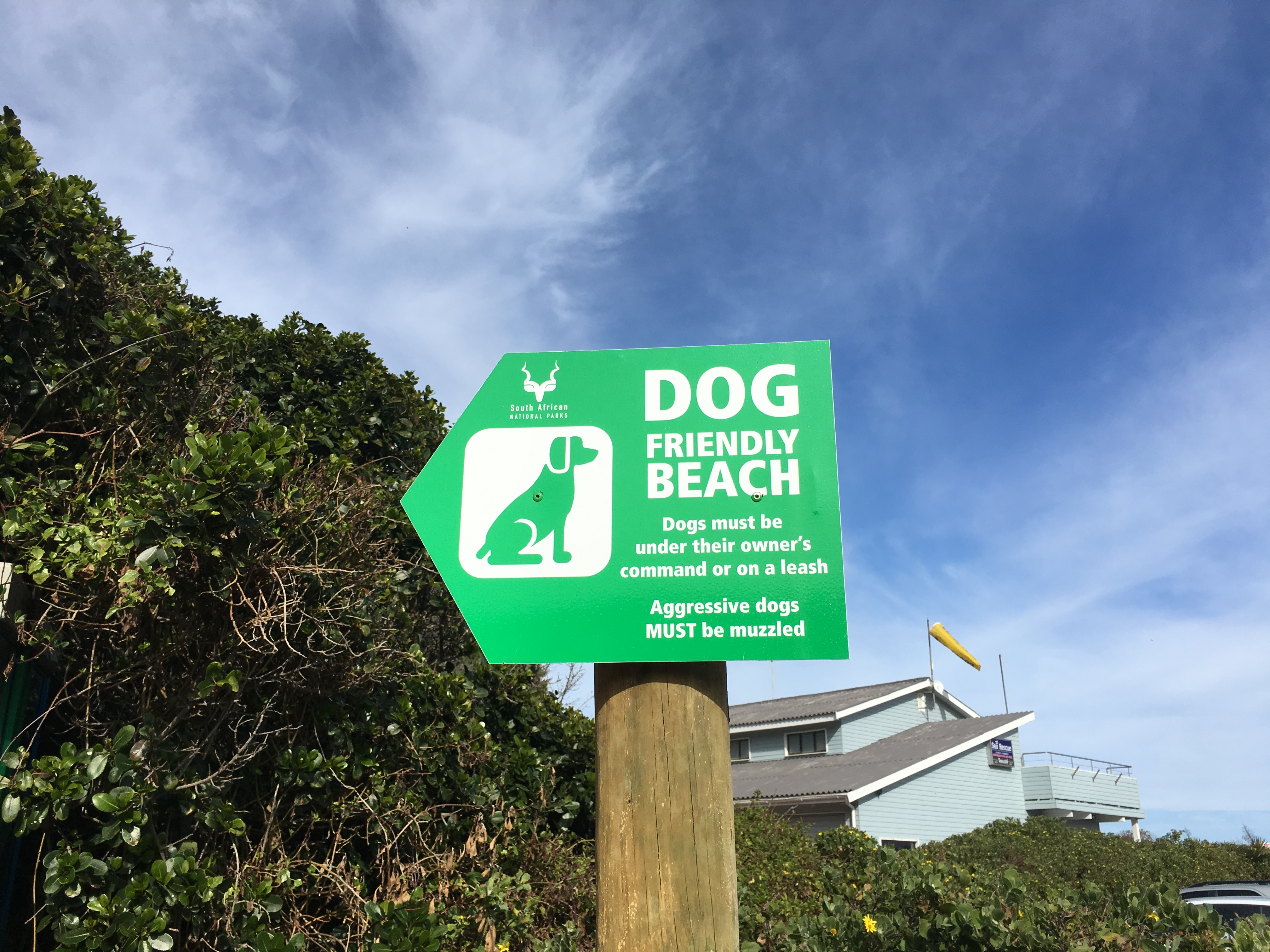 Dog friendly beach in Wilderness