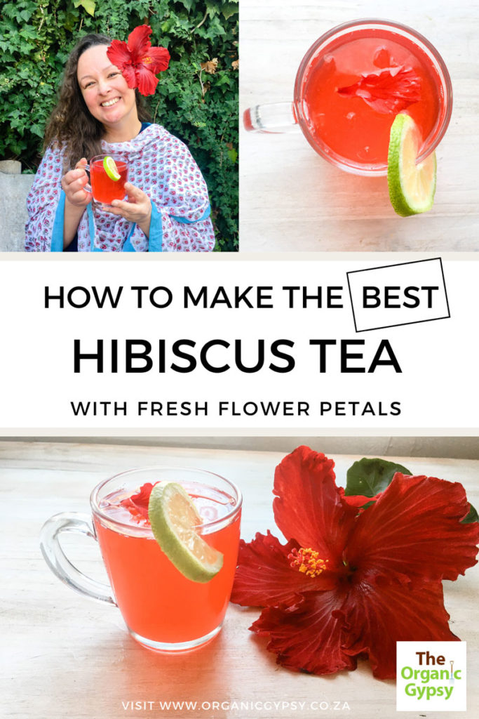 how to make the best hibiscus tea